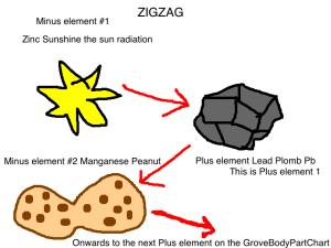 AS you ZIGZAG down our GroveBody Part Chart, you can see the Order of elements from the beginning of time too!